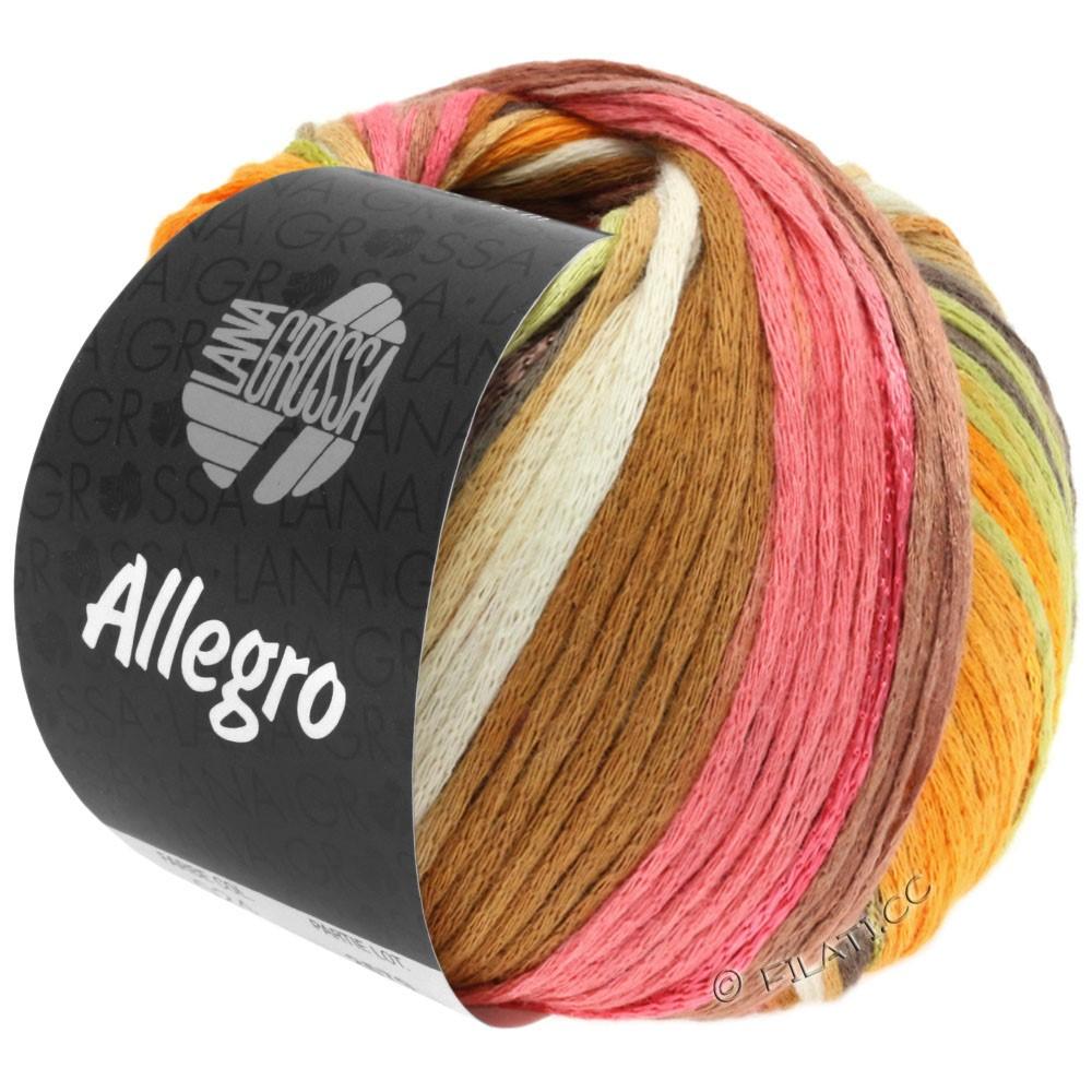 Lana Grossa ALLEGRO   026-bianco/ambra/rosa/palissandro/natura/verde pallido