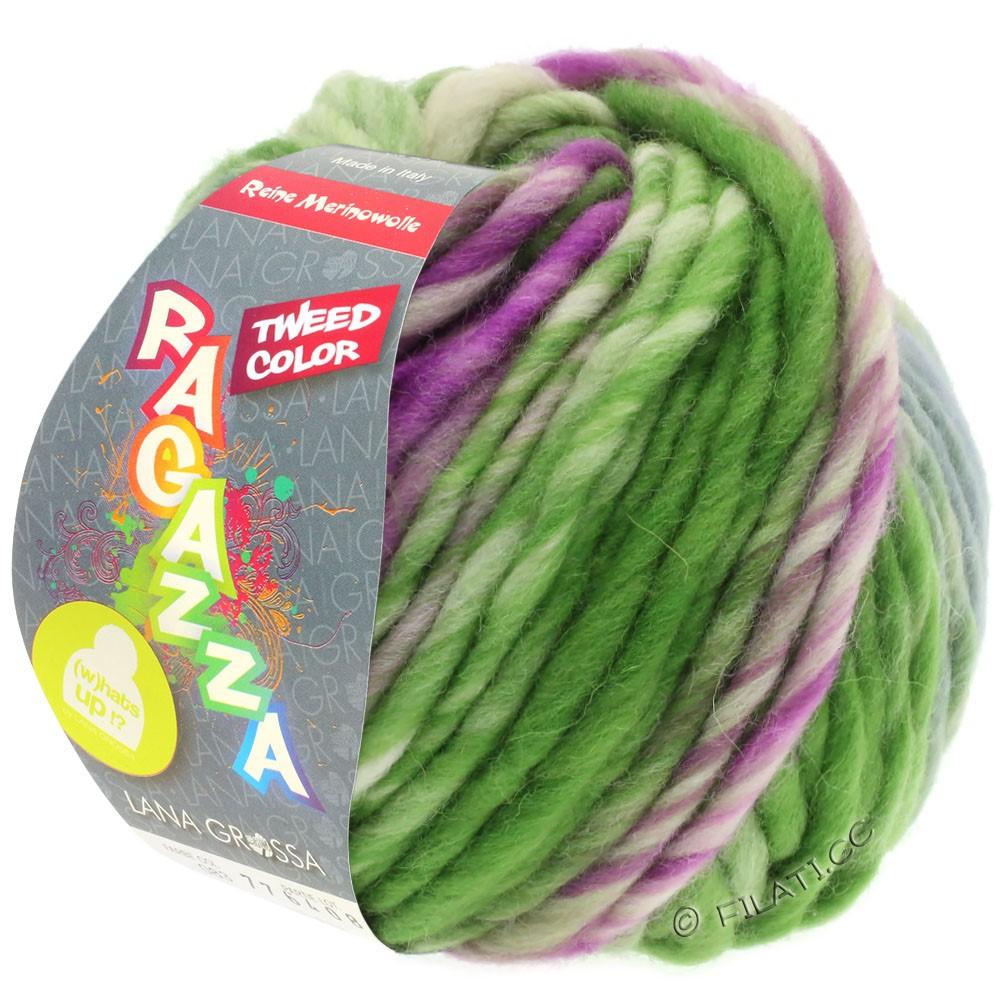 Lana Grossa LEI Tweed Color (Ragazza) | 402-grigio blu/verde/viola rosso puntinato