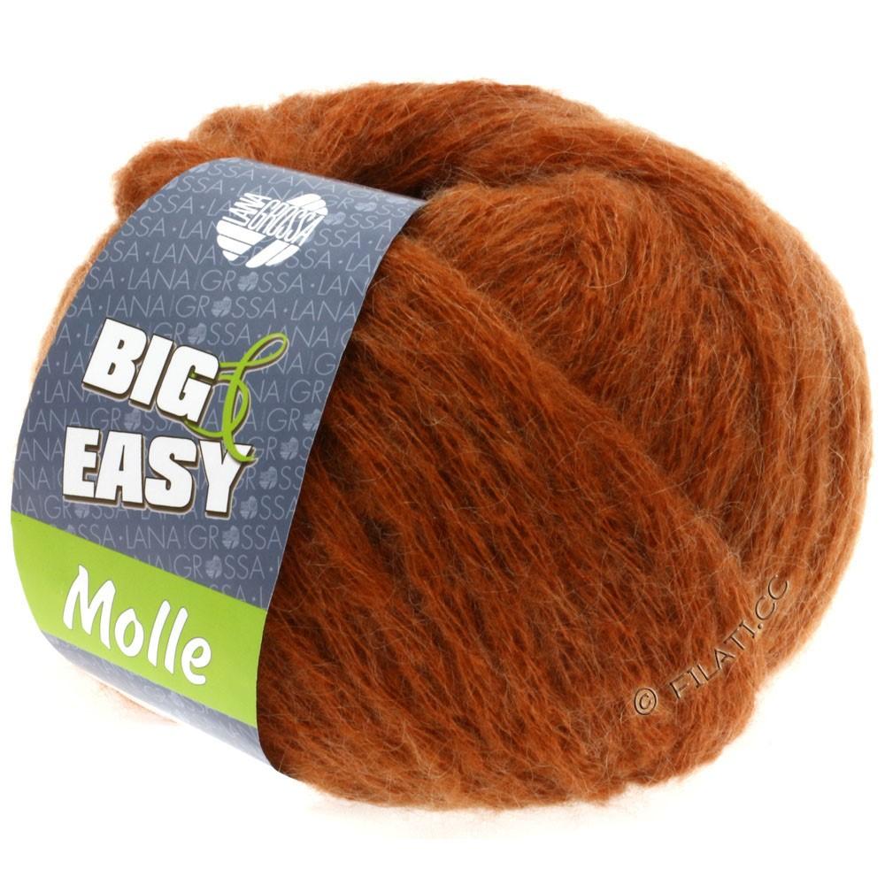 Lana Grossa MOLLE 100g (Big & Easy)   01-rame