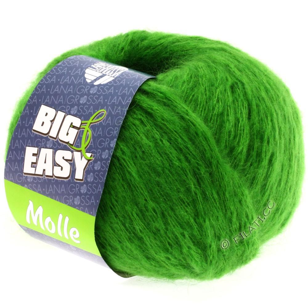 Lana Grossa MOLLE 100g (Big & Easy)   08-verde