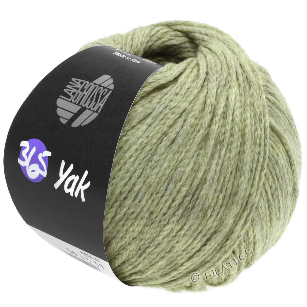 Lana Grossa 365 YAK | 19-verde delicata/grigio